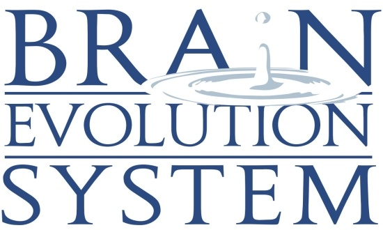Brain Evolution System Work