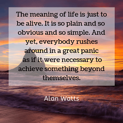 Alan Watts sayings