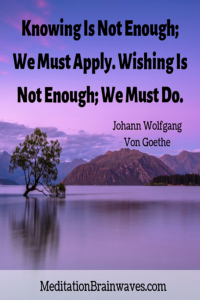 Johann Wolfgang Von Goethe knowing is not enough