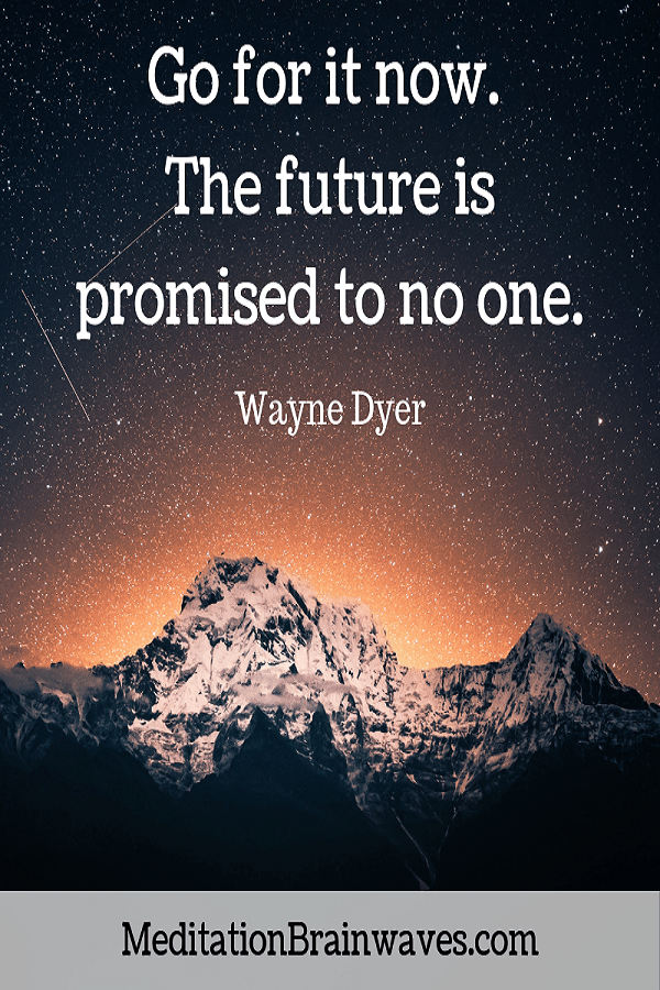 Wayne Dyer Go for it now the future is promised to no one