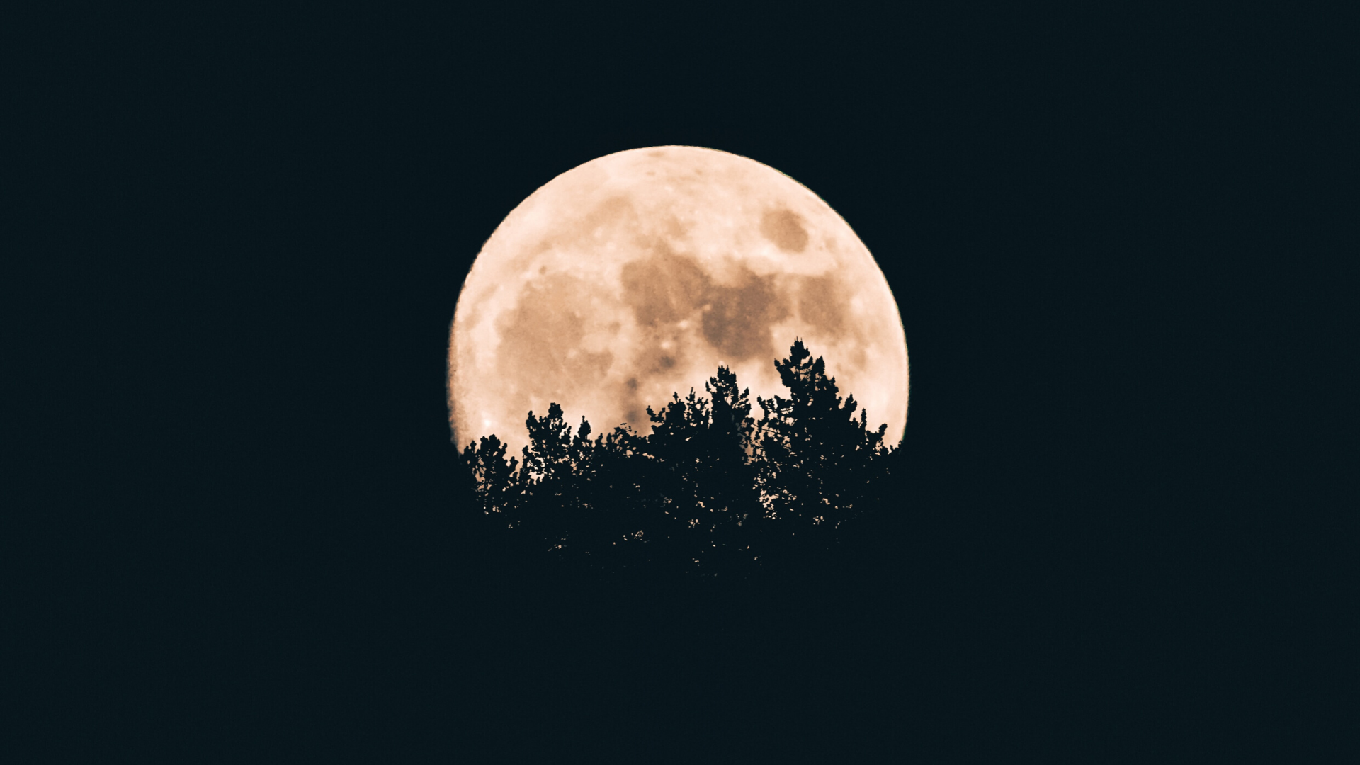 full moon Photo by Aron Visuals on Unsplash