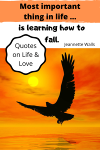 Most important thing in life is learning how to fall