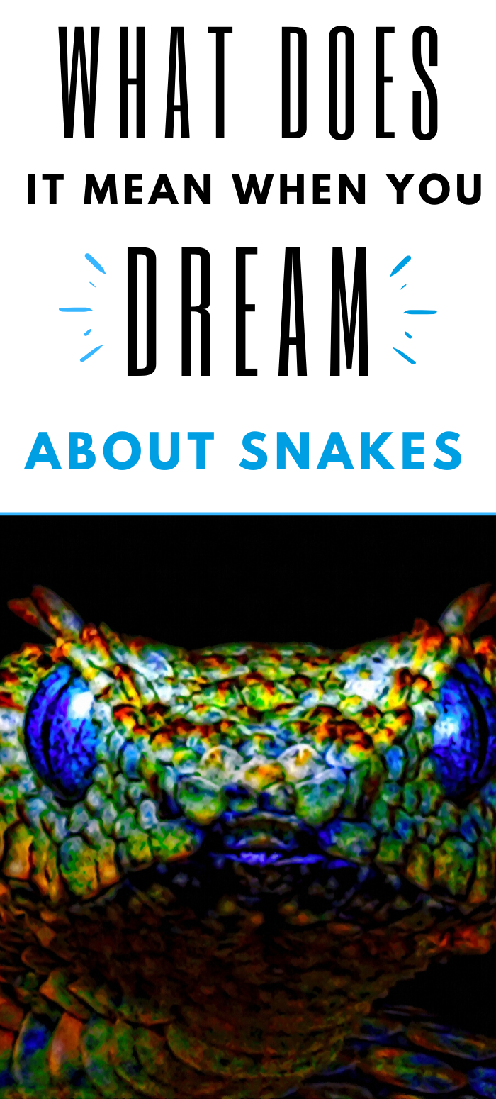 snakes dreams meaning